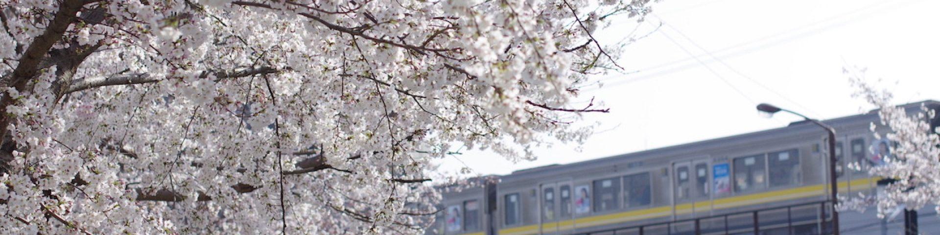 藤が丘で暮らそう –Living in Fujigaoka–
